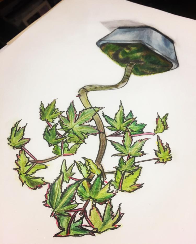 盆栽-sketch-opposite