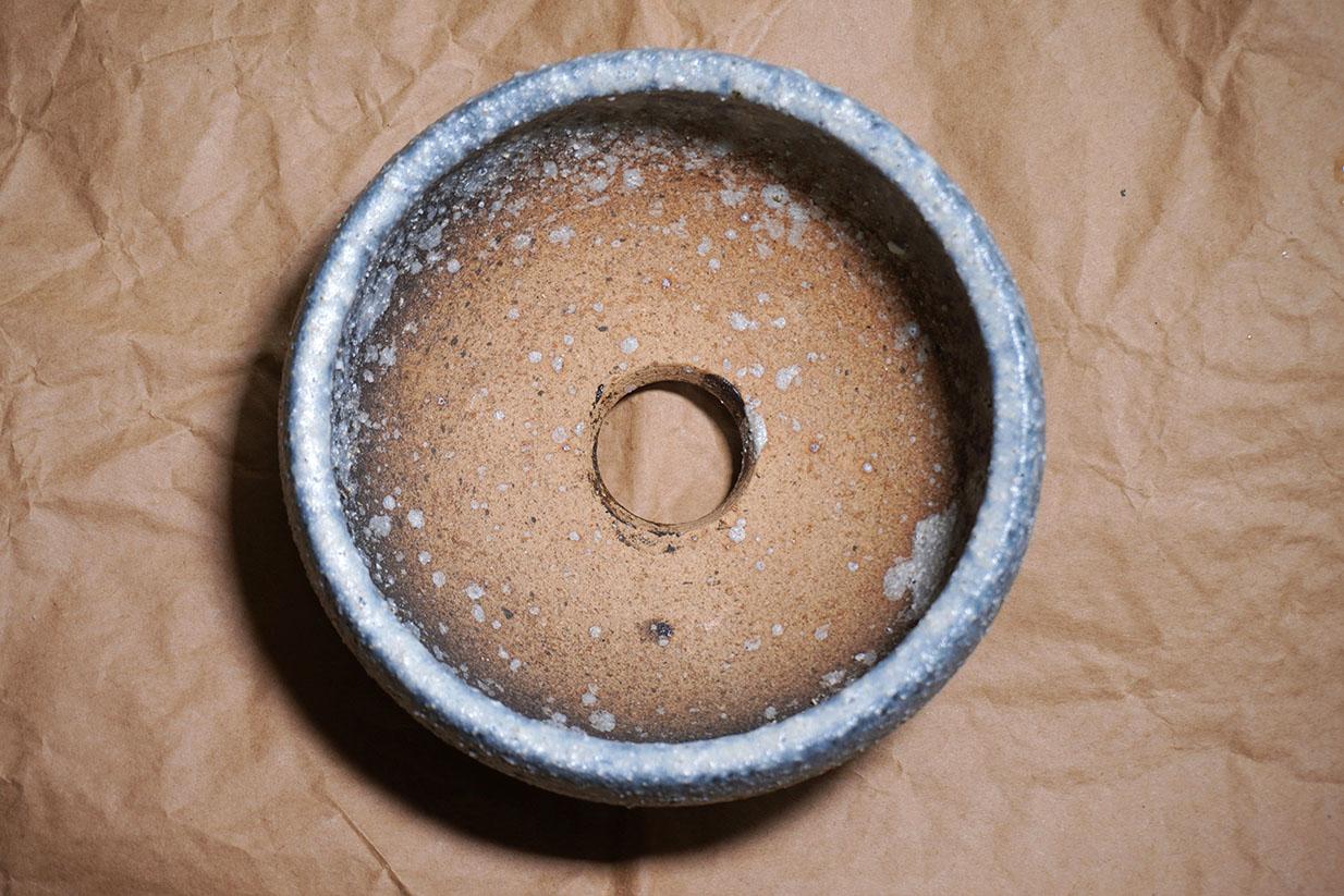 DSC00195-鉢-1