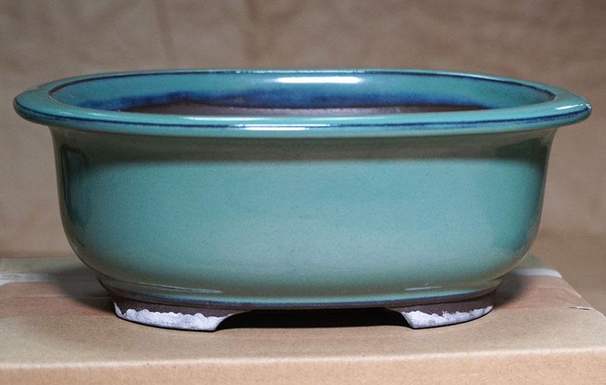 DSC00371-鉢全体2