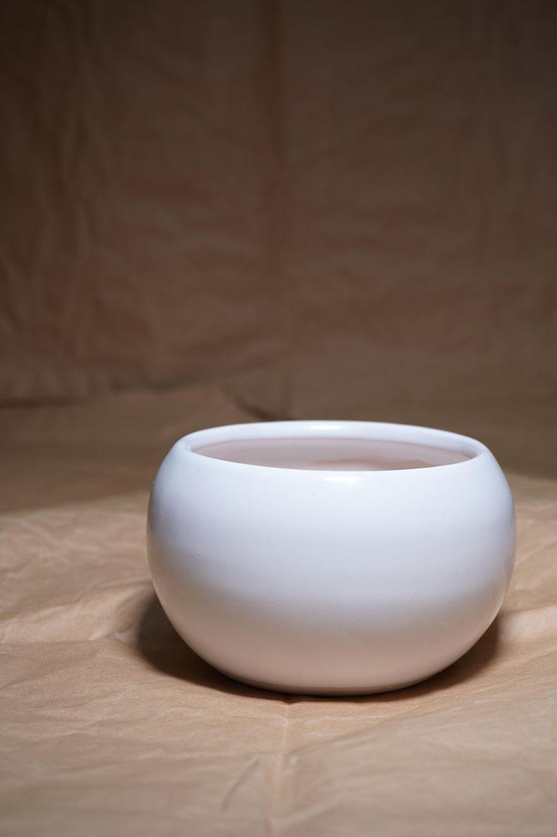 DSC00643-鉢2
