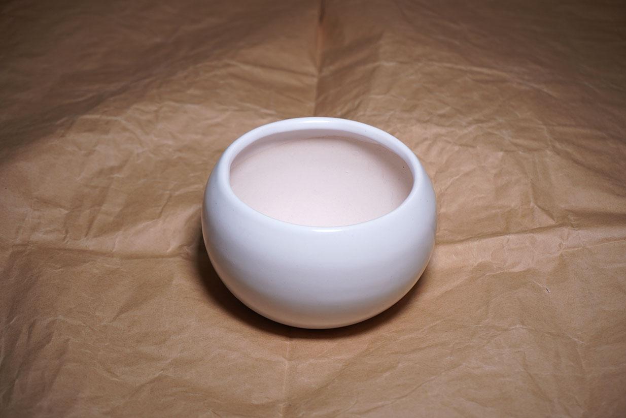 DSC00645-鉢1