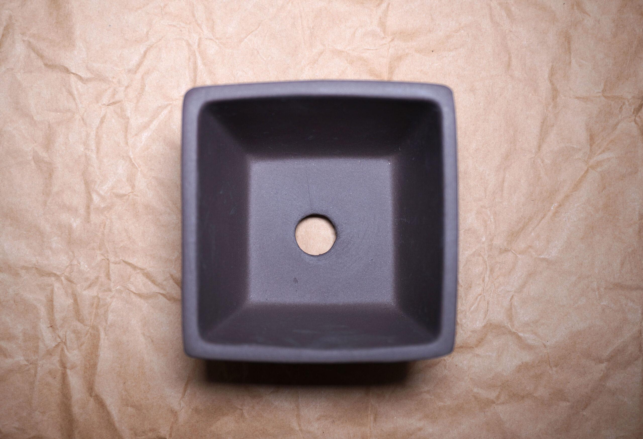 DSC00883-松鉢真上