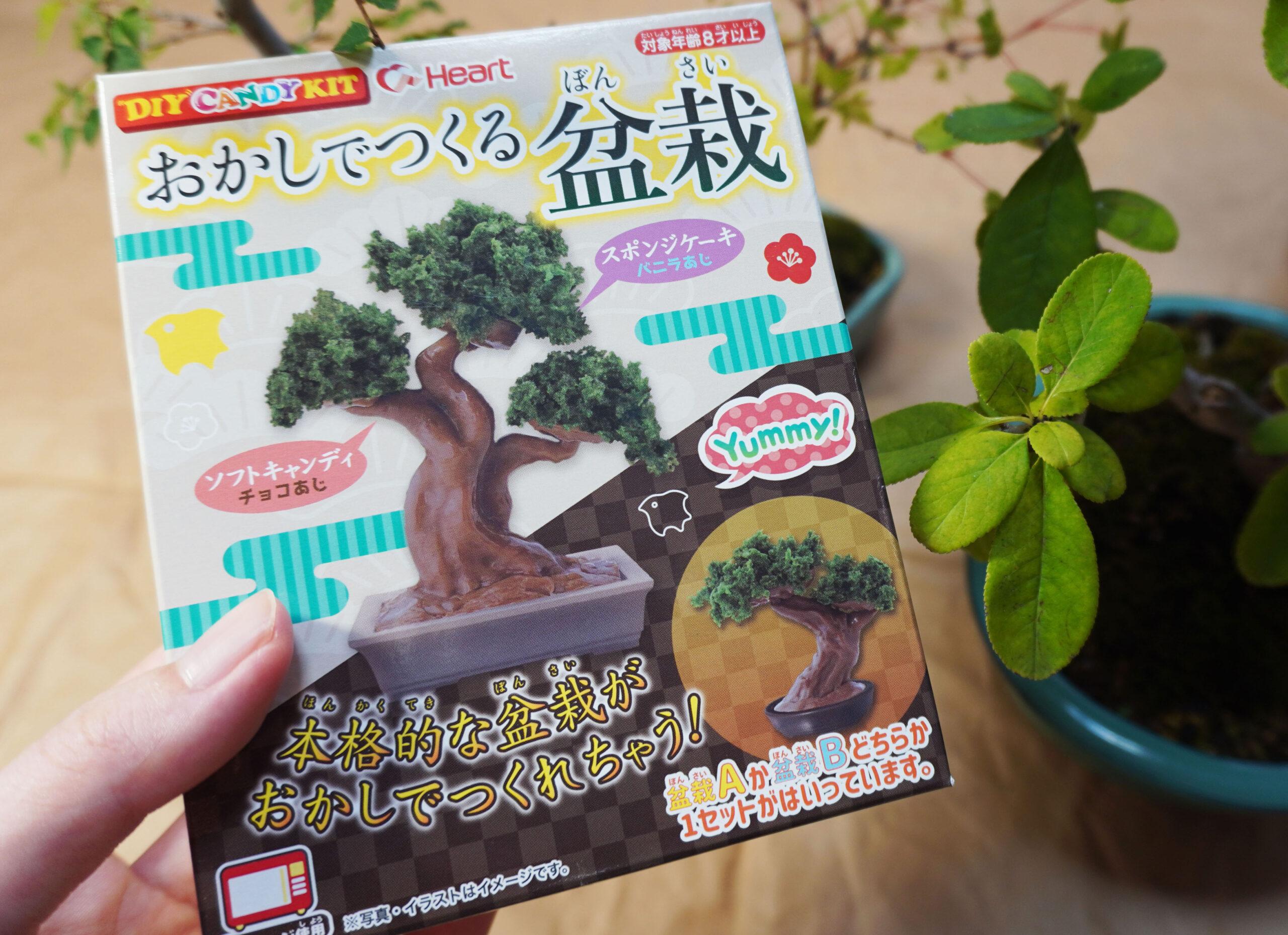 DSC01688-盆栽お菓子 2