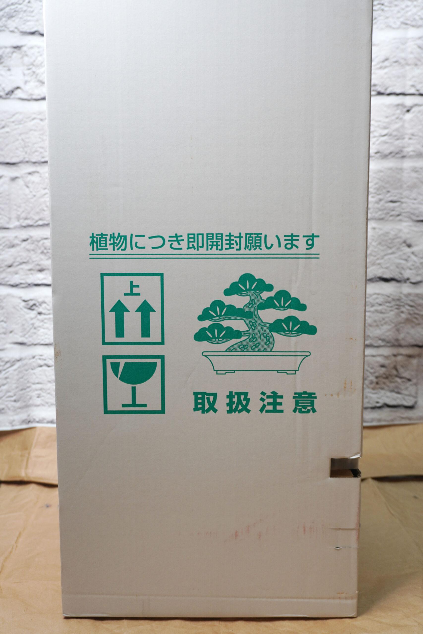 DSC01847-箱たて